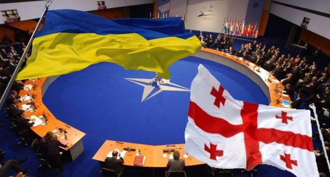«Это поможет умерить аппетиты Путина»: На слушаниях в Конгрессе США прозвучало предложение о членстве в НАТО Украины и Грузии