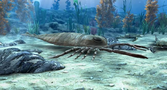 Их длина могла достигать 2,5 метров: ученые заявили о гигантских скорпионах-хищниках, обитавших в палеозойскую эру