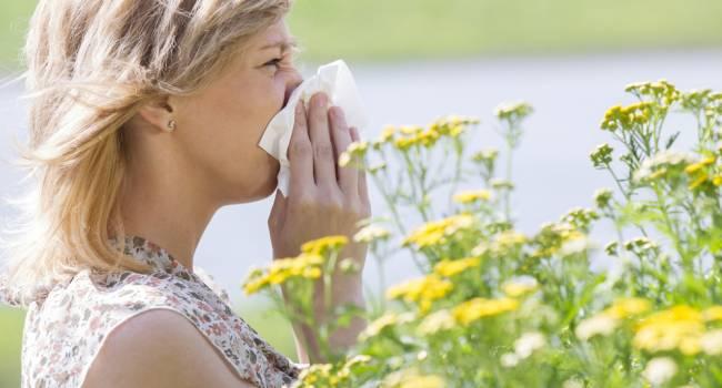 «Насморк и кашель быстро пройдут»: врачи назвали лучшие способы избавиться от аллергии на пыльцу