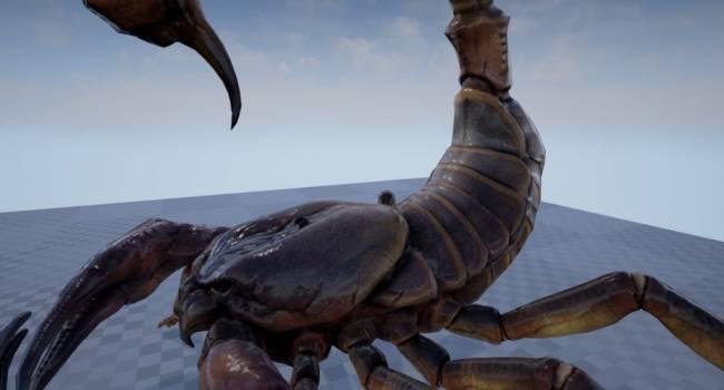 «Они были просто гигантскими - до двух метров»: ученые рассказали, какие членистоногие доминировали на планете миллионы лет назад