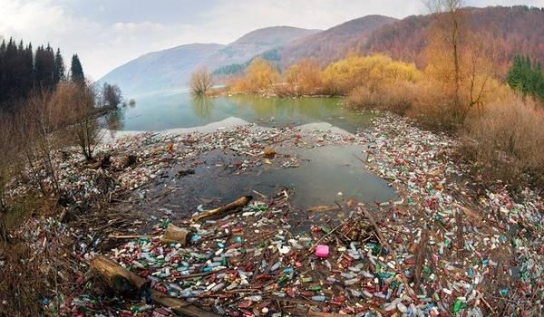 На Закарпатье бьют тревогу из-за риска «мусорного коллапса»
