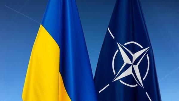 НАТО готовится расширить сотрудничество с Украиной