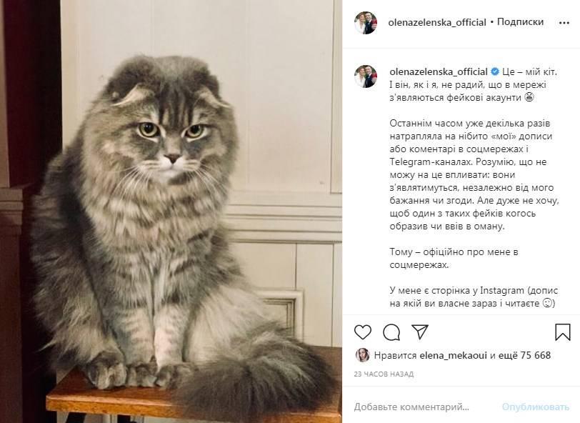 Елена Зеленская пожаловалась на появление фейковых страниц в соцсетях, которые публикуют сообщения от ее имени