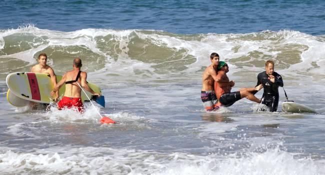 Массовое нашествие акул: в США срочно закрывают пляжи