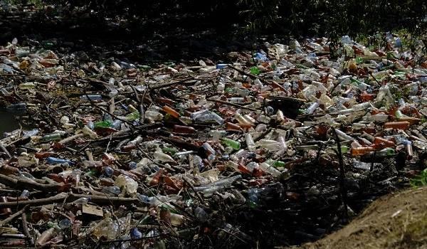 «Вся надежда на естественный отбор»: сеть возмущена переполненной бутылками рекой на Закарпатье