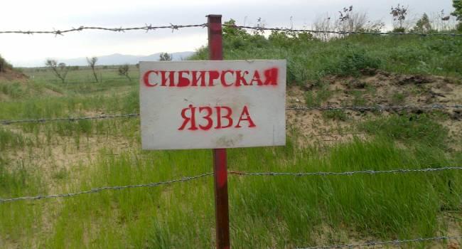 Все пациенты - мужчины: в Кыргызстане зафиксирована вспышка сибирской язвы