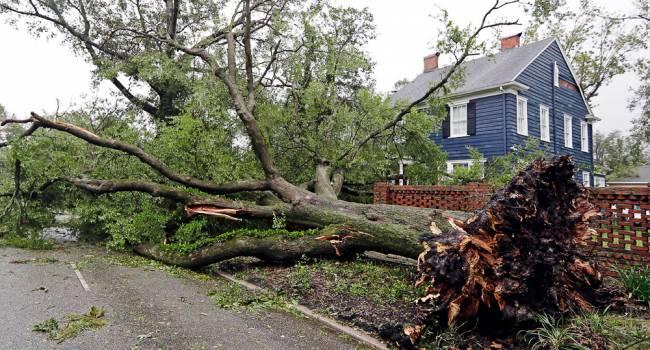Почти полмиллиона американцев срочно покинули дома из-за надвигающегося урагана