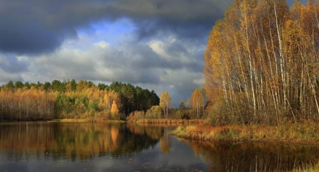 «Бабье лето будет в ноябре»: народный синоптик рассказал о непростых погодных условиях этой осенью
