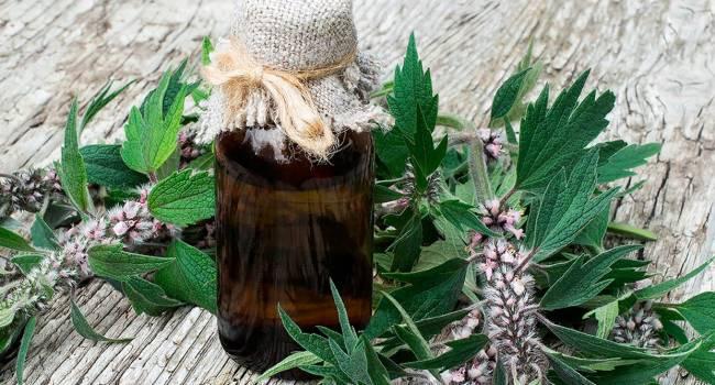 Нарколог: «Боярышник и валерьянка вызывают алкогольную зависимость»