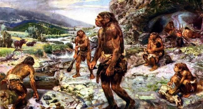 «Использовали вместо огня»: ученые рассказали, как древние люди готовили горячую пищу