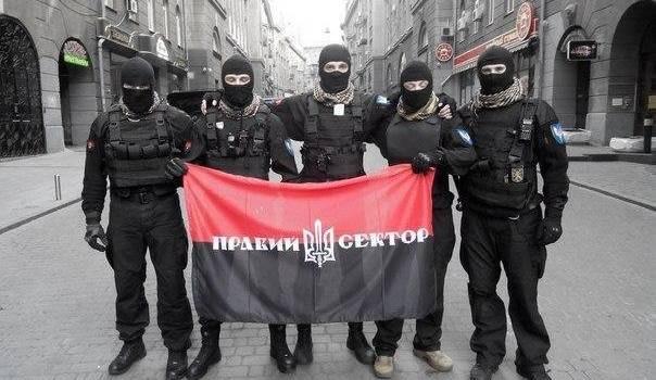 Представители «Правого сектора» устроили акцию протеста у здания ЦИК против «Партии Шария» и «компании»