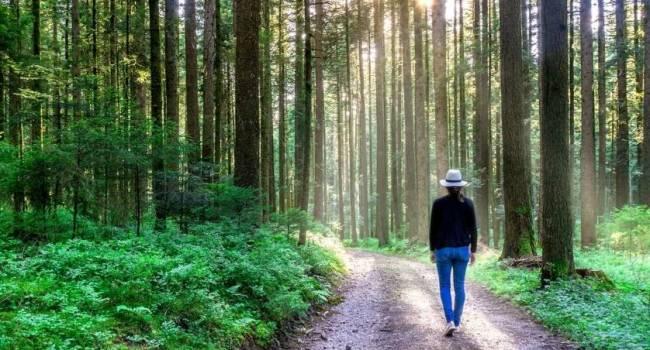 «Снижается уровень повседневного стресса»: ученые назвали гениальный способ улучшить качество жизни