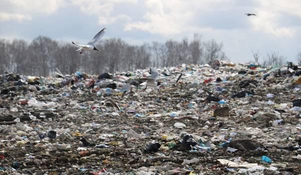В России заявили о критической ситуации с мусорными полигонами