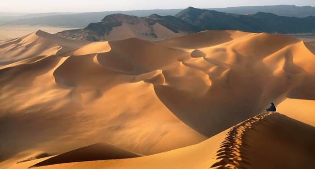 «Это будет грандиозная трансформация»: ученые заявили, что пустыня Сахара превратится в оазис