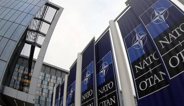 Эксперт: в Украине по-прежнему носятся с идеей получения ПДЧ в НАТО