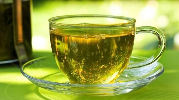 Медики пояснили, как зеленый чай помогает бороться с вирусами