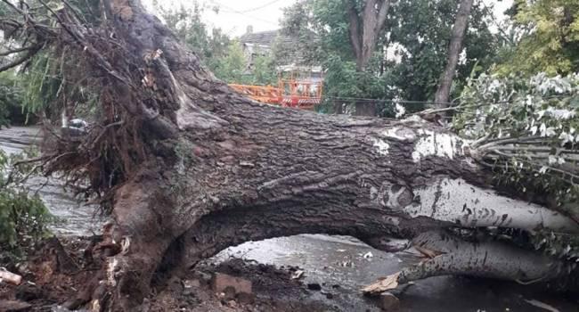 Над Николаевской областью пронесся ураган: Сняты кровли с 30 домов, повалены 60 деревьев