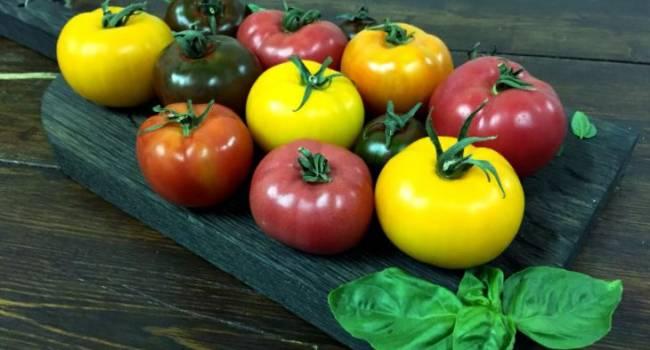 Сезон уже заканчивается: эксперты рассказали, как хранить помидоры