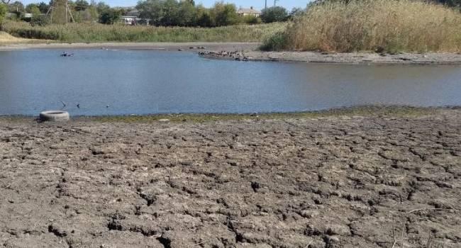 «Осадков не было больше двух месяцев»: климатолог объяснила, почему в Украине исчезают большие водоемы