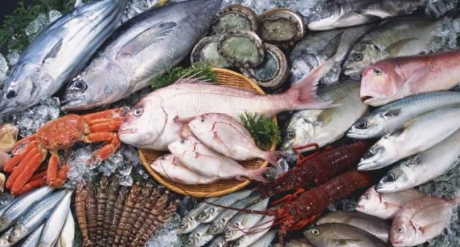 Выбирать очень сложно: эксперты назвали самую полезную рыбу