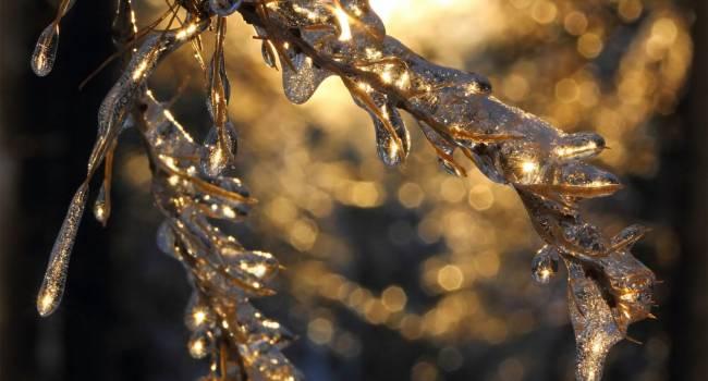 Ледяной дождь и оттепель: синоптик рассказала о неожиданной погоде предстоящей зимой