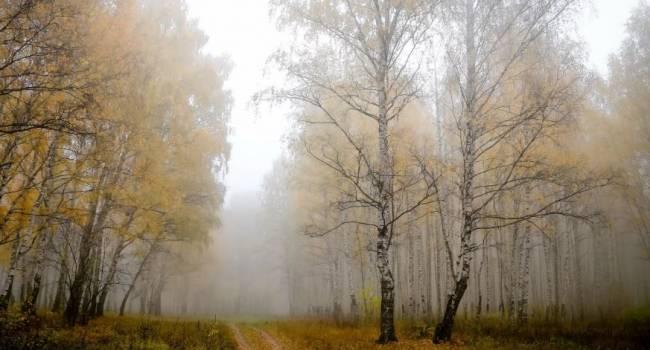 «Это начнет происходить уже в пятницу»: синоптик рассказала о резких погодных изменениях