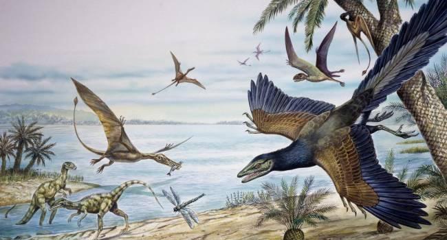 «Они господствовали вместо динозавров»: ученые обнаружили в Антарктиде окаменелости гигантских птиц