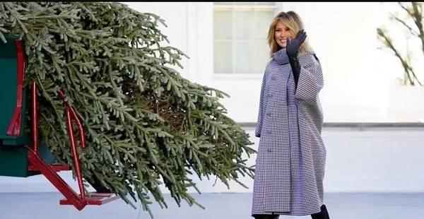 Мелания Трамп в последний раз будет украшать рождественскую елку: ее уже доставили