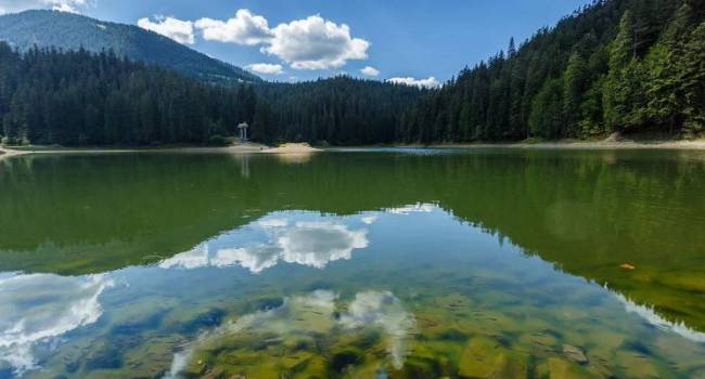 Акция по сортировке отходов: украинцам предлагают бесплатно посетить парк Синевир