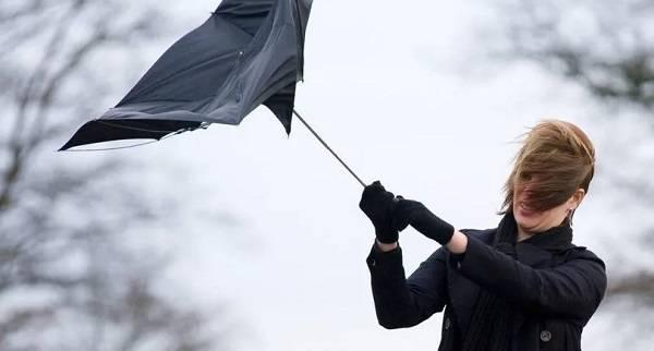 Потепление и штормовой ветер: синоптик рассказала о погоде в Украине в пятницу