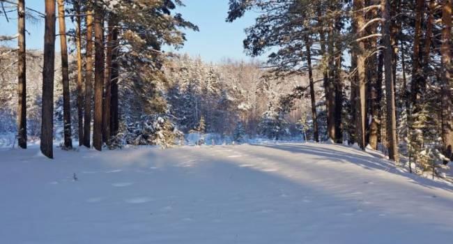 Холоднее всего будет на востоке: синоптик рассказал о настоящей зимней погоде в декабре