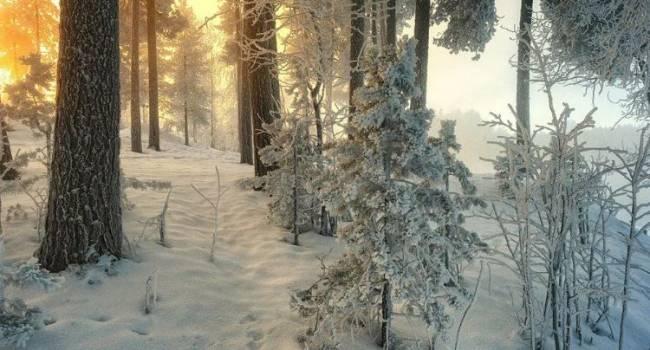 Температурные качели и дожди на Новый год: народный синоптик разочаровал прогнозом до конца декабря