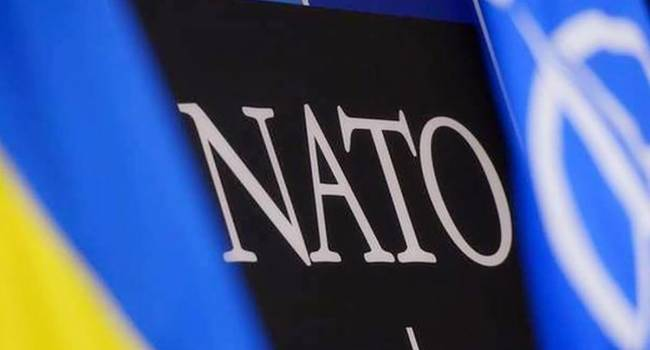 НАТО должно проводить больше военных учений в Украине. Киев хочет больше взаимодействий – Кулеба