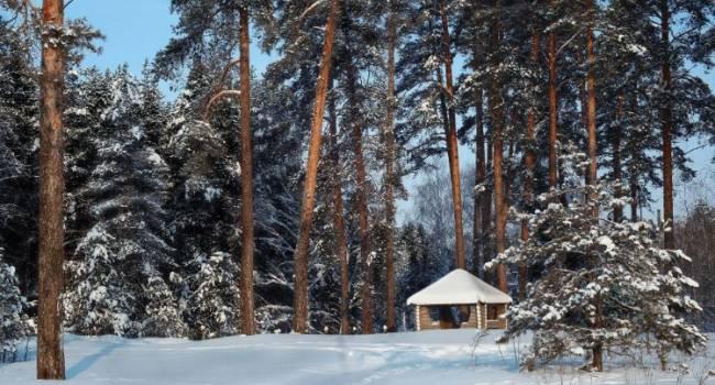 В страну придёт сильный мороз: синоптик рассказал о погоде на День святого Николая