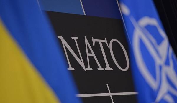 «Искусственная мишень для РФ»: эксперт пояснил, как Москва прореагирует на партнерство Украины с НАТО