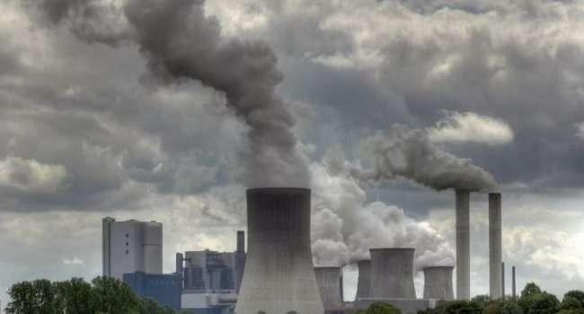 Из-за проблем с экологией: ученые заявили, что на Земле началась эпоха шестого массового вымирания