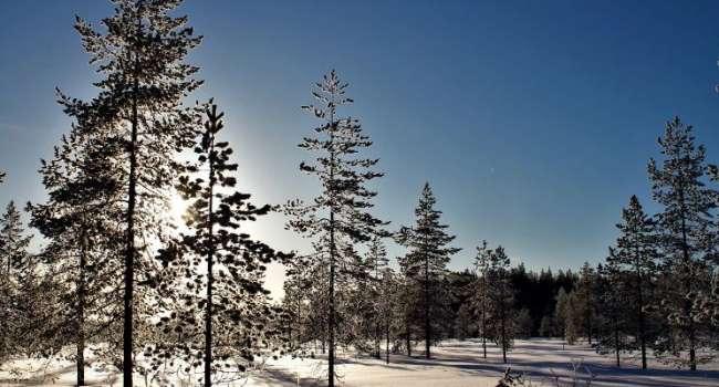Ещё немного потерпеть: в Гидрометцентре рассказали, когда морозы уйдут из Украины