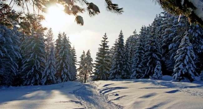 Температура будет повышаться, но очень медленно: в Гидрометцентре рассказали о морозах до конца зимы