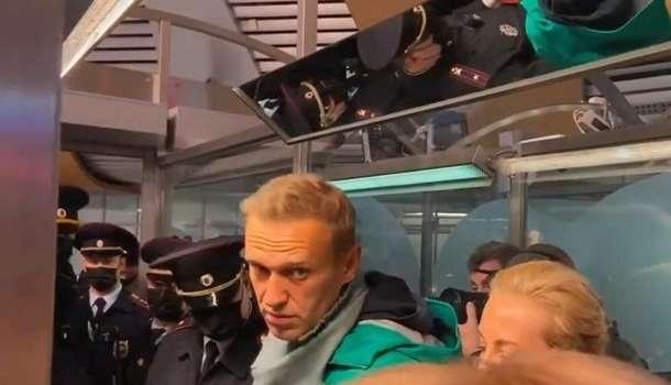 «Чего боится эта бункерная жаба, сидящая на трубе?»: Навальный обозвал Путина, призвав россиян организовать митинги
