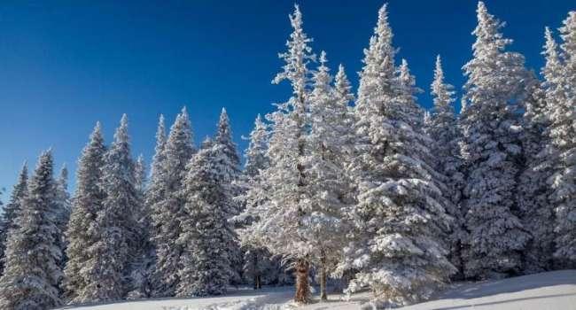 Морозы сохранятся только на востоке: синоптик предупредила о резкой смене погодных условий