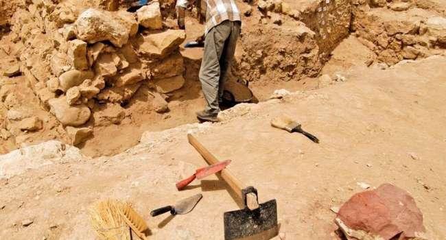 Возраст около 40 миллионов лет: в Германии обнаружили останки самого древнего питона