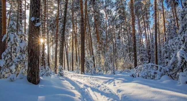 Кратковременные морозы до -30 градусов: в Гидрометцентре удивили прогнозом на февраль