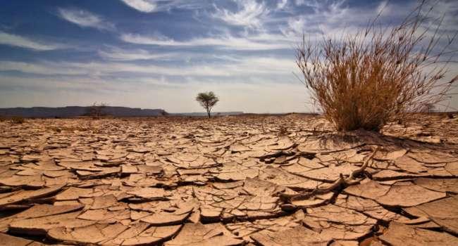 Эксперты ООН: жители всех стран переживают из-за глобального потепления