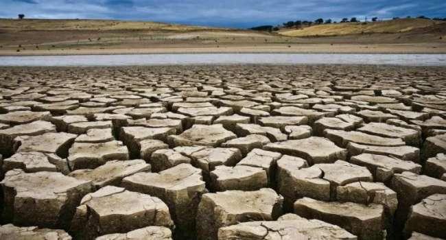 «Жара уже убила десятки тысяч человек»: известный эколог предупредил украинцев о демографической катастрофе из-за изменений климата