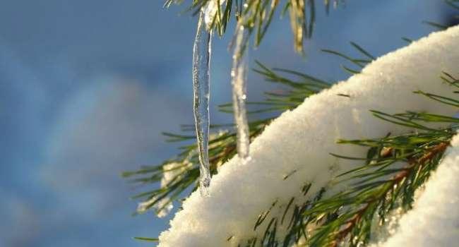 Много дождей и высокая температура: синоптики рассказали о погоде в последние выходные зимы