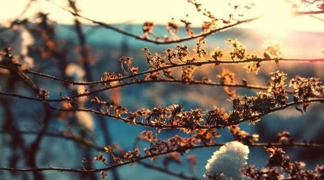 Синоптик рассказал, когда в Украину придет настоящая весна