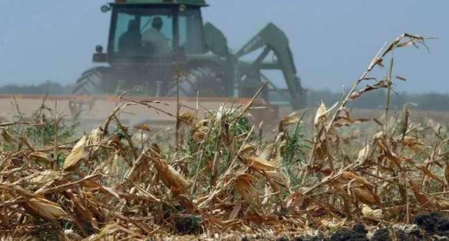 Самая тяжёлая катастрофа: во Франции заявили о глобальном ущербе для страны