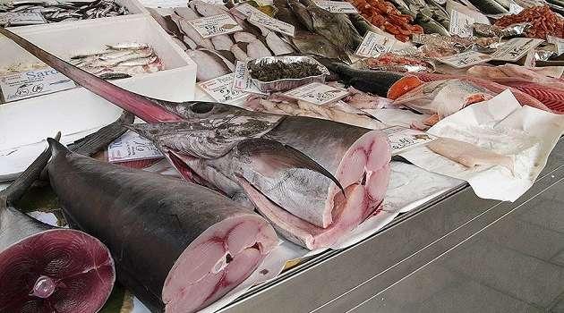 Эксперты рассказали о негативном влиянии рыбы на нервную систему