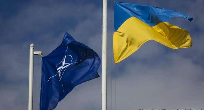 Украина не будет присутствовать на саммите НАТО – журналист